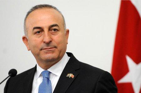 Թուրքիան հայտարարել է ԱՄՆ-ի հետ միասին սիրիական Մանբիջ մտնելու ծրագրերի մասին